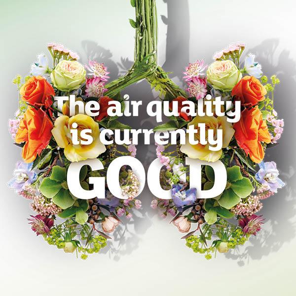 Instagram, good air quality