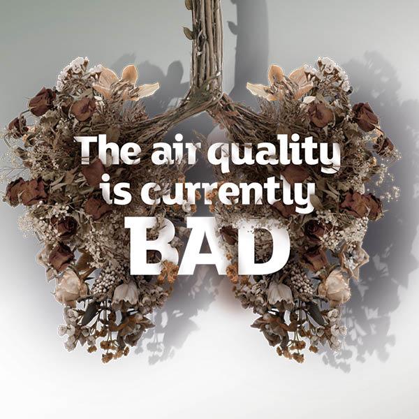 Instagram, bad air quality