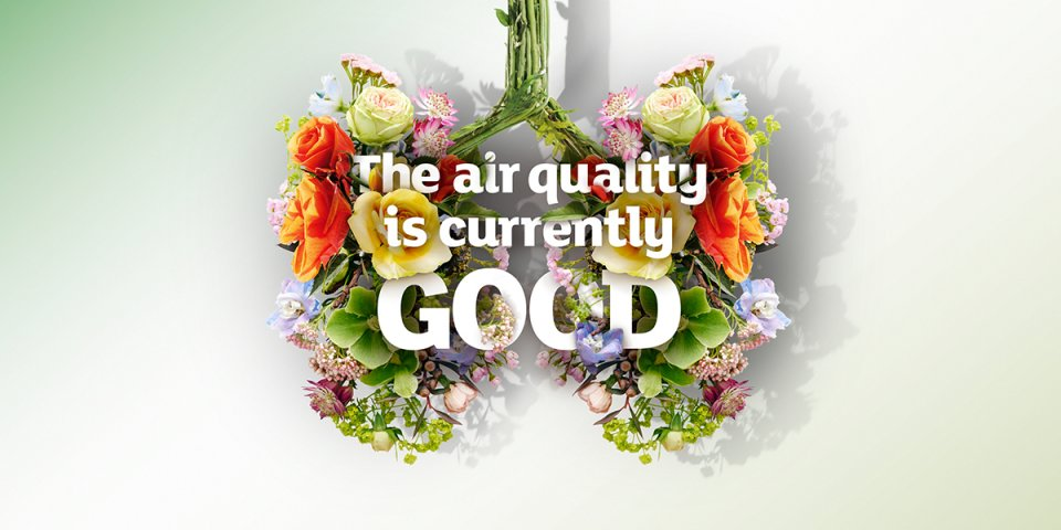 Twitter, air quality good