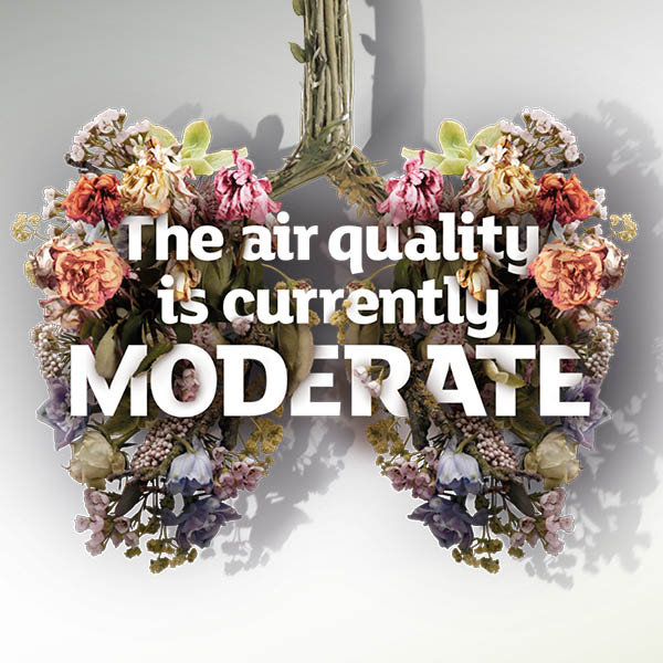 Instagram, moderate air quality