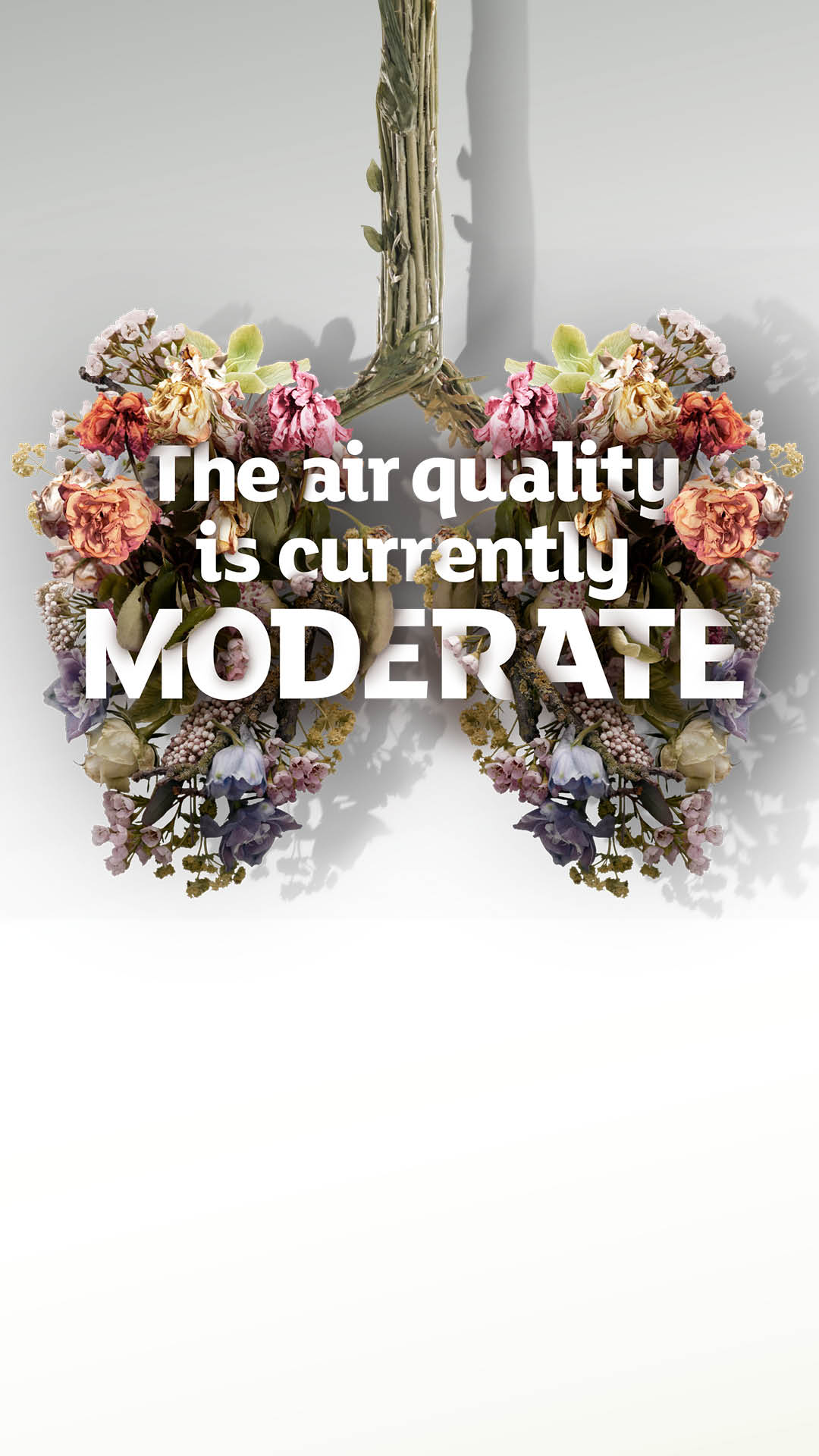 Stories, moderate air quality