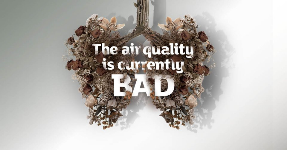 "Charity launches ""breathable billboard"" to mark new campaign to build back cleaner air"